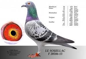 20586-13 GOBBI (5)